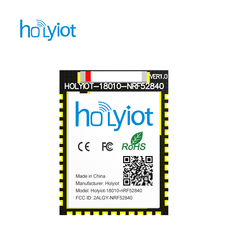 Holyiot long range Nordic nRF52840 chipset BLE module Ceramic Antenna Bluetooth low Energy for Bluetooth mesh